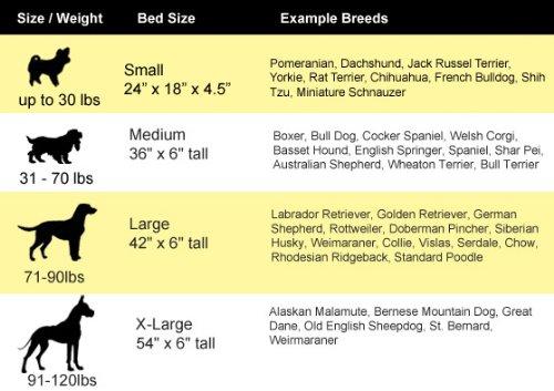 dog sizes chart