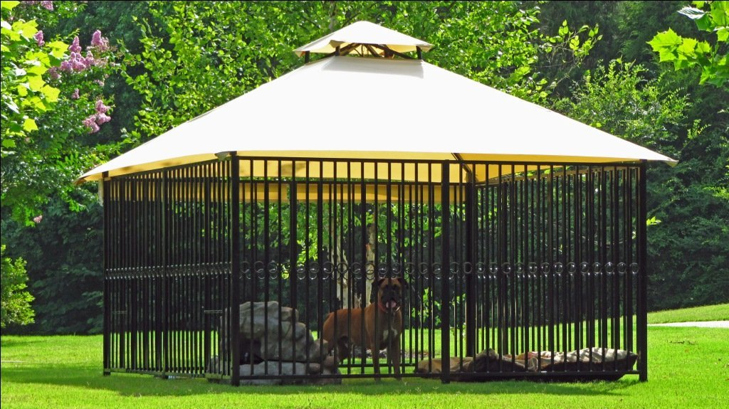 The quick dog kennel handbook for Breeding kennel designs