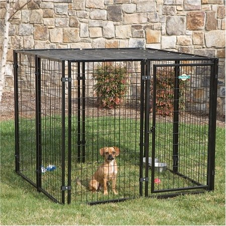 The quick dog kennel handbook for Dog kennel systems